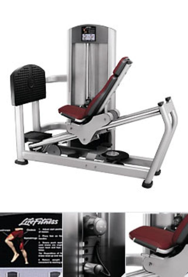 Seated leg press (FZSLP)