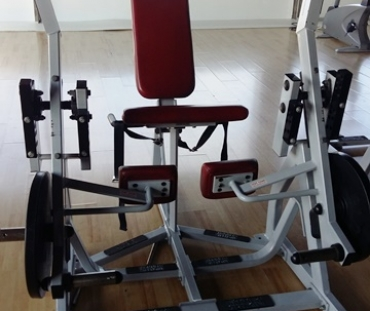 Life Fitness Hammer Strength Lower Body and Torso