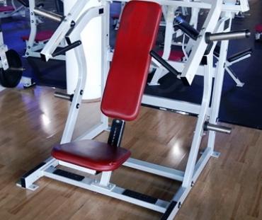 Life Fitness Hammer Strength Isolated Upper Body