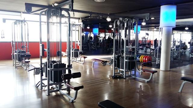 MultiJungle 8 stack life fitness pro series