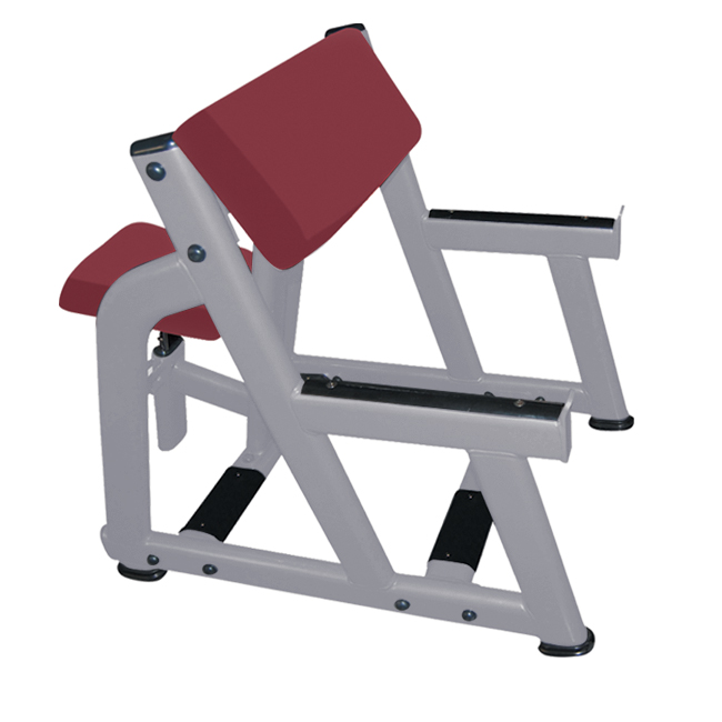 seated arm curl bench fw 1004