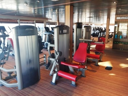 Palestra completa life fitness Signature