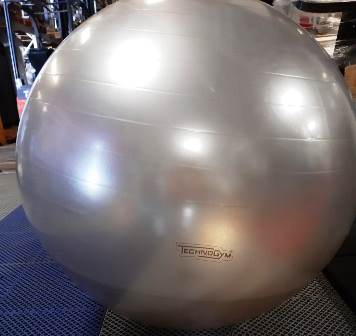 Fit ball diam.65 technogym
