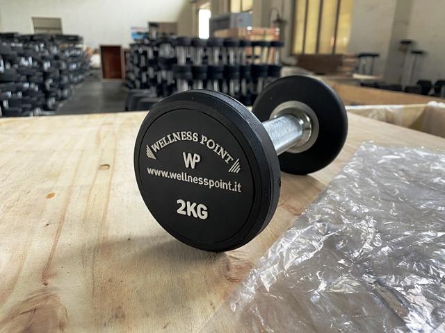 Serie manubri gommati da 2 a 20kg.WP