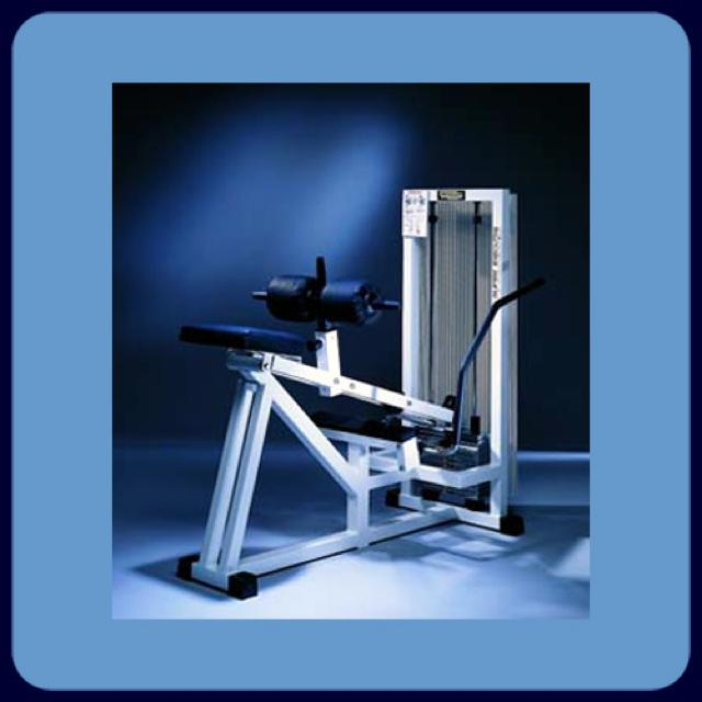 Calf Machine - Sit. Position
