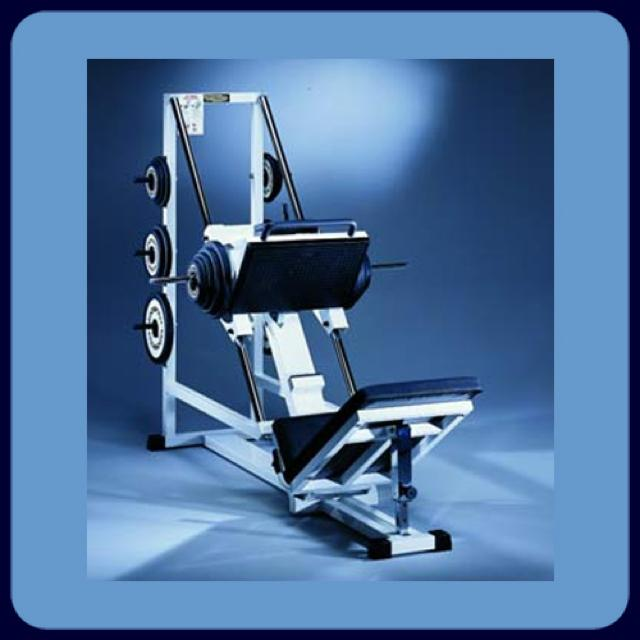 Leg Press 45 degree