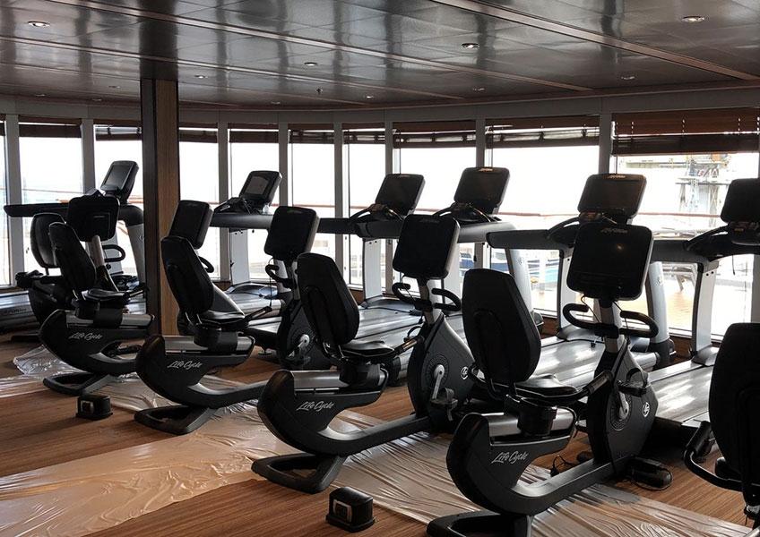 Life Fitness - ottima occasione